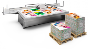 Firmenschilder Druckmaschine Nyala2